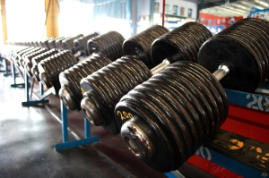 Heavy_Dumbbells_200_pound